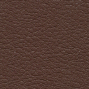 adriatico marrone